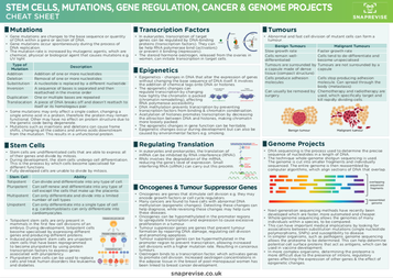 A-level Biology AQA Notes: Gene Expression And Cancer - A